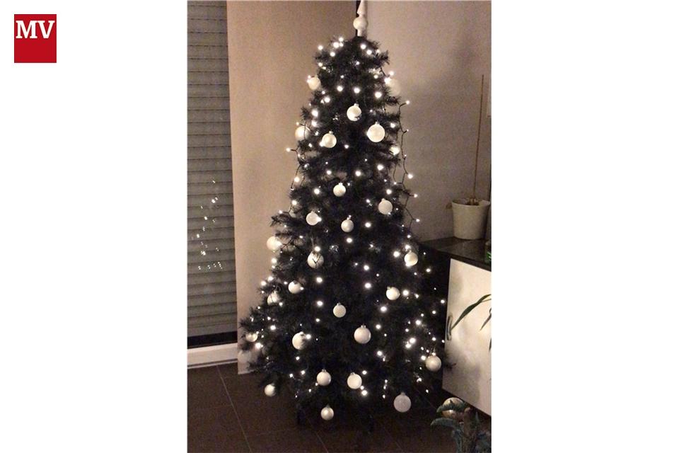 Der Weihnachtsbaum.Mv Online