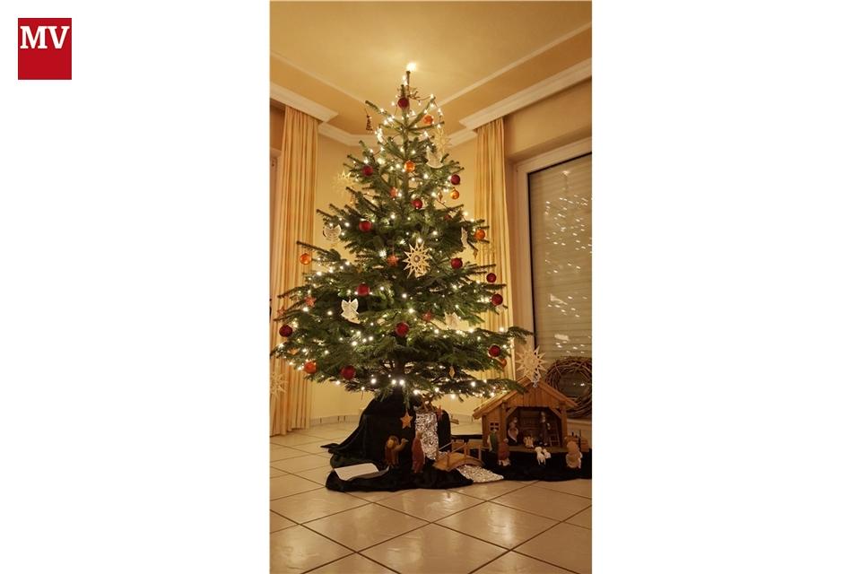 christmas tree illustration soo viele arten einen. Black Bedroom Furniture Sets. Home Design Ideas