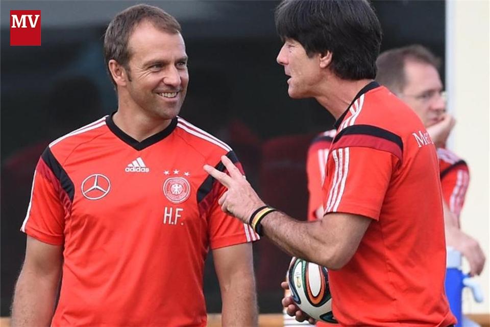 Co Trainer Fc Bayern